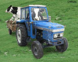 http://www.cuma-alliance-guipry.com/pages/photos-hors-cuma/photos-de-gros-tracteurs-agricoles/gifs-animes-de-materiel-agricole-agriculture-tracteur-ensileuse-moissonneuse-agriculteur-paysan-ferme.html