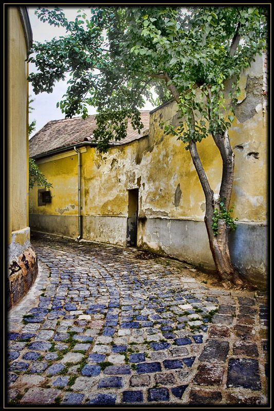 Szentendre - Historically artistic town just north of Budapest on the Danube