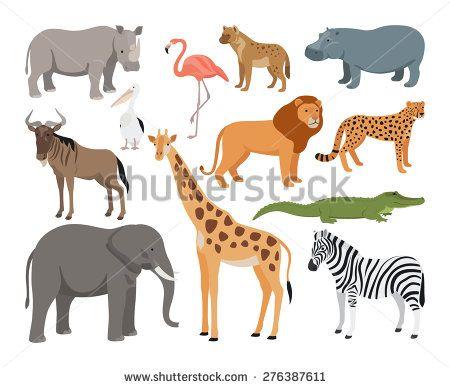 Animal Set Fotografie, snímky a obrázky | Shutterstock