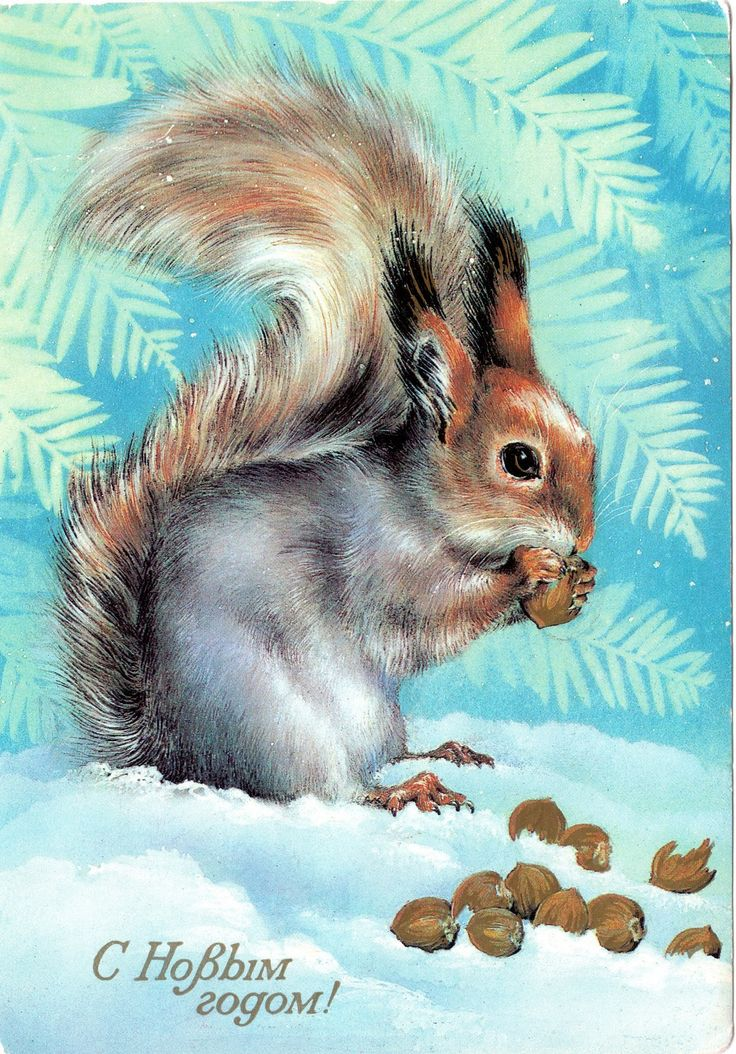 С Новым годом!   Художник А. Исаков  Открытка. Министерство связи СССР, 1985 г.   Vintage Russian Postcard - Happy New Year