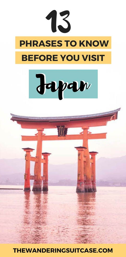 Phrases to learn before you visit Japan | Phrase Guide | Getting around Japan | Learning Japanese | Japanese for travel | #japantravel #japanesephrases via @wanderingsuitca