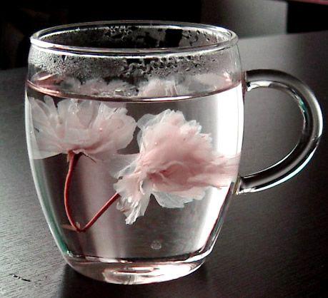 桜茶。/ さくらちゃ。/ Sakura (cherry blossom) tea.