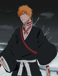 Ichigo Kurosaki (Reigai) - Bleach Fanfiction Wiki - Wikia