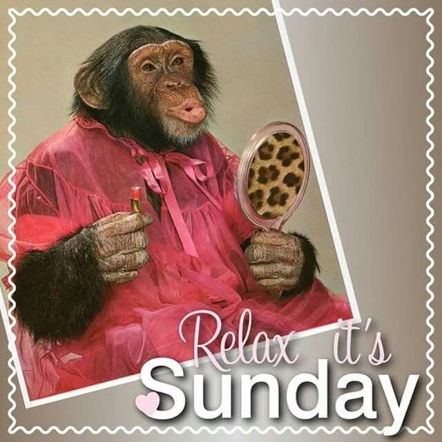 Fijne zondag