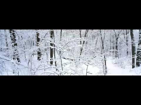Дмитрий Шлетгауэр - Любовь не ищет своего | 316NEWS