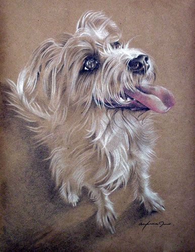 """""""Abigail"""" - colored pencil on brown paper"""