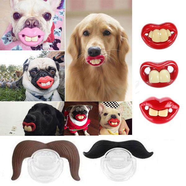 Dummy Lustige Zähne Schnuller Kleine Hund Bulldog Mops Haustier Kauen Spielzeug in Haustierbedarf, Hunde, Spielzeug | eBay
