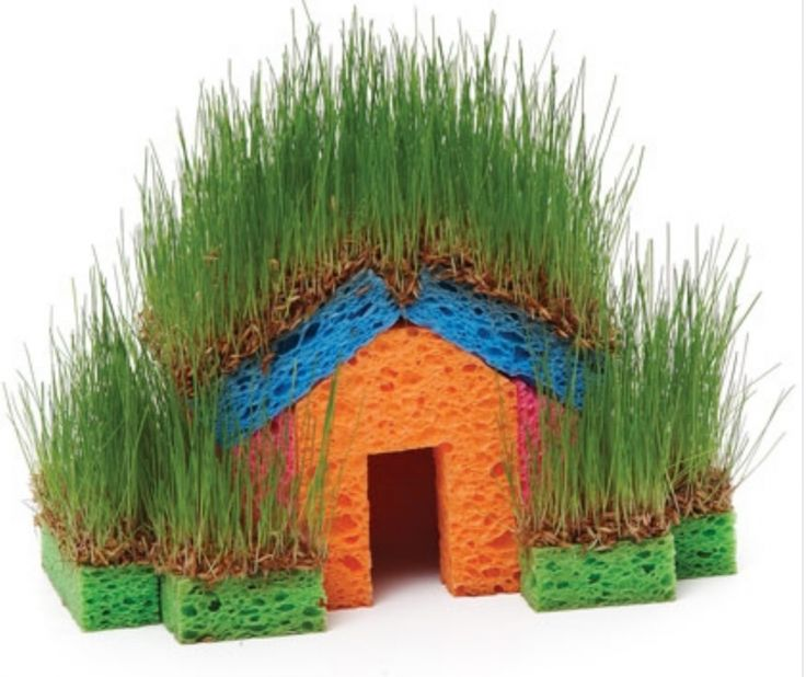 These little Grass Sponge Houses are a fun project for the whole family! Try this easy DIY today.