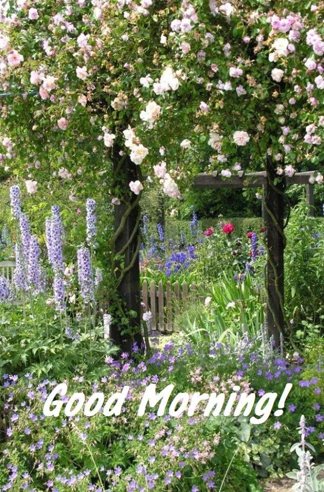 60 mejores im genes sobre good morning quotes en pinterest for Jardines de soraya