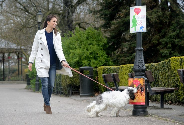 "To promote its new 'socials' events and in particular ""bark in the park"" match.com has unveiled a campaign to attract the attention of passers-by and their dogs. Lampost adverts placed around London's Battersea Park (with separate posters for owners and their dogs). The posters at dog-level have been scented with a beefy dog food aroma to attract passing pooches."
