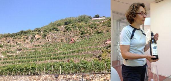 Valtellina mon amour: ovvero, il Nebbiolo secondo Ar.Pe.Pe - Vino - World Wine Passion