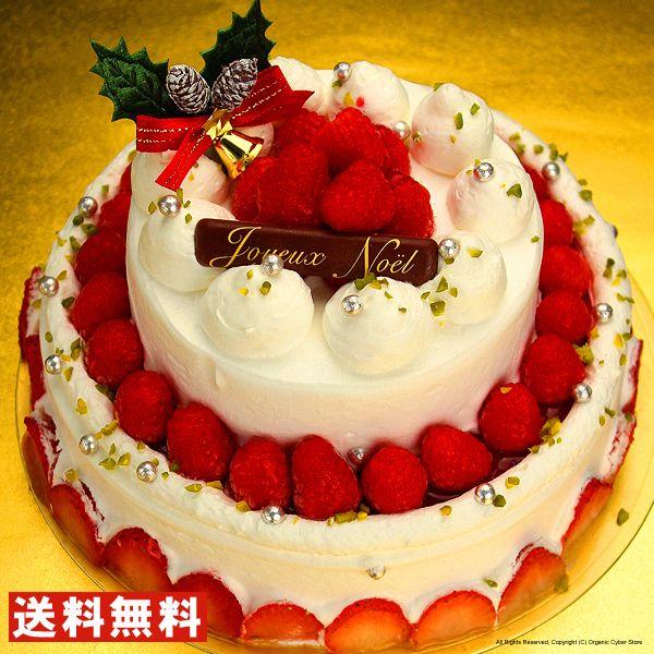 送料無料 クリスマスケーキ パーティー用2段デコレーションチーズケーキ 早割 早期割引