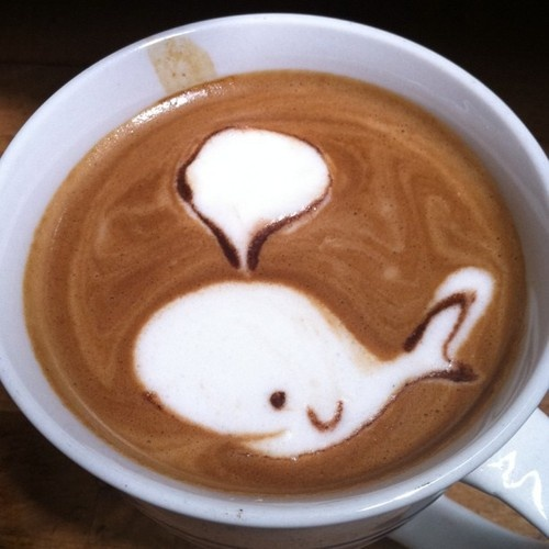 whale you have a latte with me?