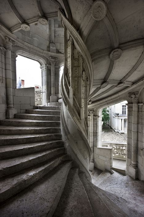 spiral stair...Remind me of a book I recently read.Spirals Staircases, Stairs, De Blois, Loire Valley France, Castles, Architecture, Castle, Spiral Staircases, Stairways
