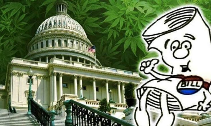 By Anthony Johnson From WeedNews  Oregon Congressmen, Senator Ron Wyden and Representative Earl Blumenauer, announced the introduction of three bills that will protect state cannabis laws and provide a path forward for the federal government to end the failed and harmful policy of cannabis prohibition. With a supermajority of American voters supporting medical cannabis and... #bills #bipartisan