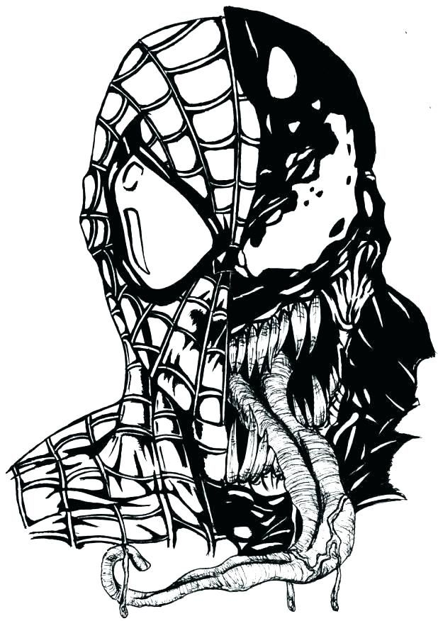 Spiderman And Venom Coloring Pages Spiderman Drawing Spiderman Coloring Spiderman Tattoo