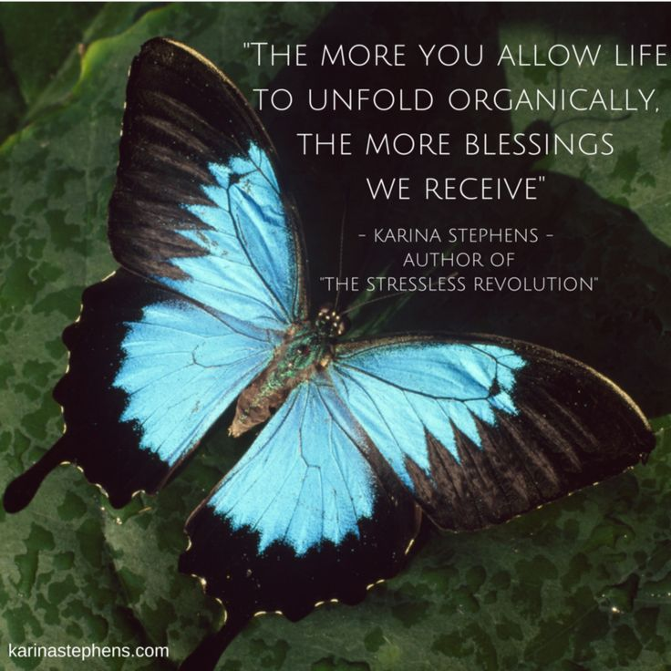 The more you allow life to unfold organically, the more blessings we receive..  www.karinastephens.com
