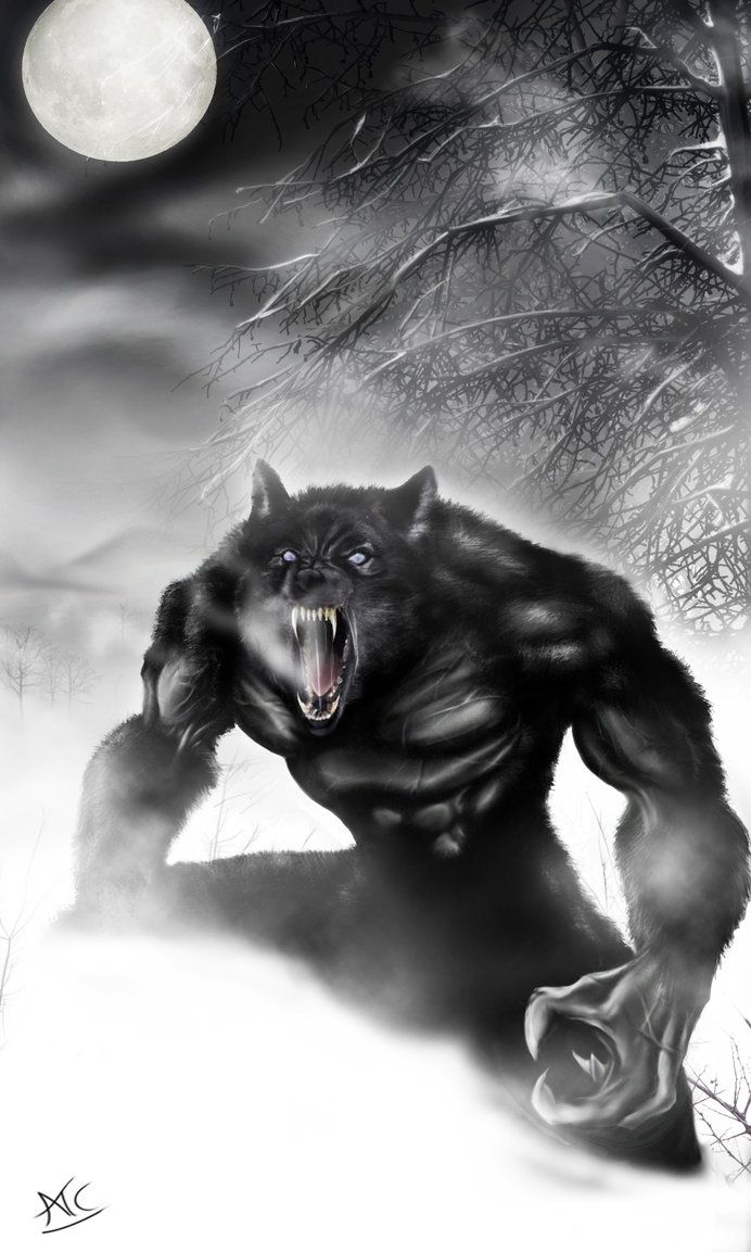 Werewolf PS by Scribbletati.deviantart.com on @DeviantArt