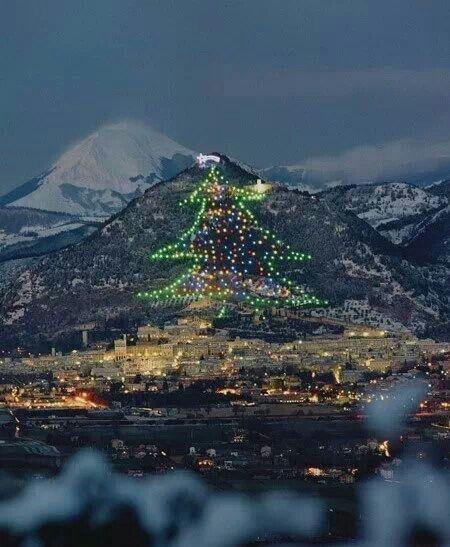 Albero di Natale più grande del mondo!