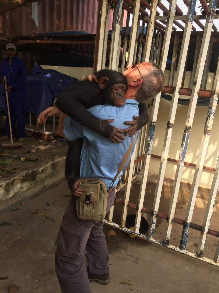Chimp Who Spent Years Chained To A Tree Hugs The Man Who Saved Her