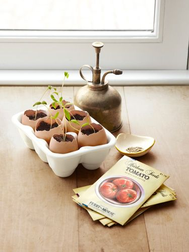 This spring, recycle your cracked eggshells by using them as adorable — and earth-friendly — starter pots.