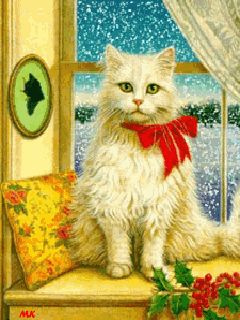 Download White Cat Mobile Screensavers for your cell phone | MobileTonia.com