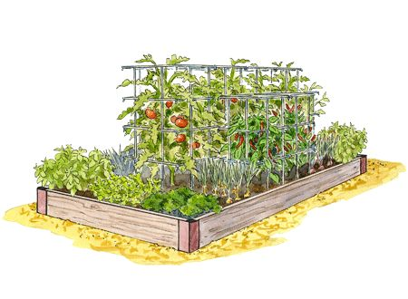 380 best Square Foot Paleo Gardens images – How To Plan My Garden