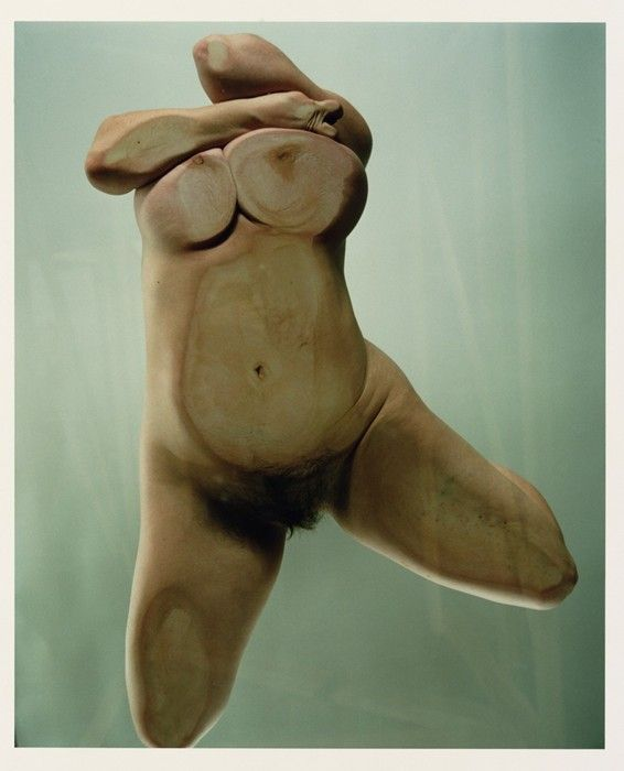 Jenny Saville and Glen Luchford