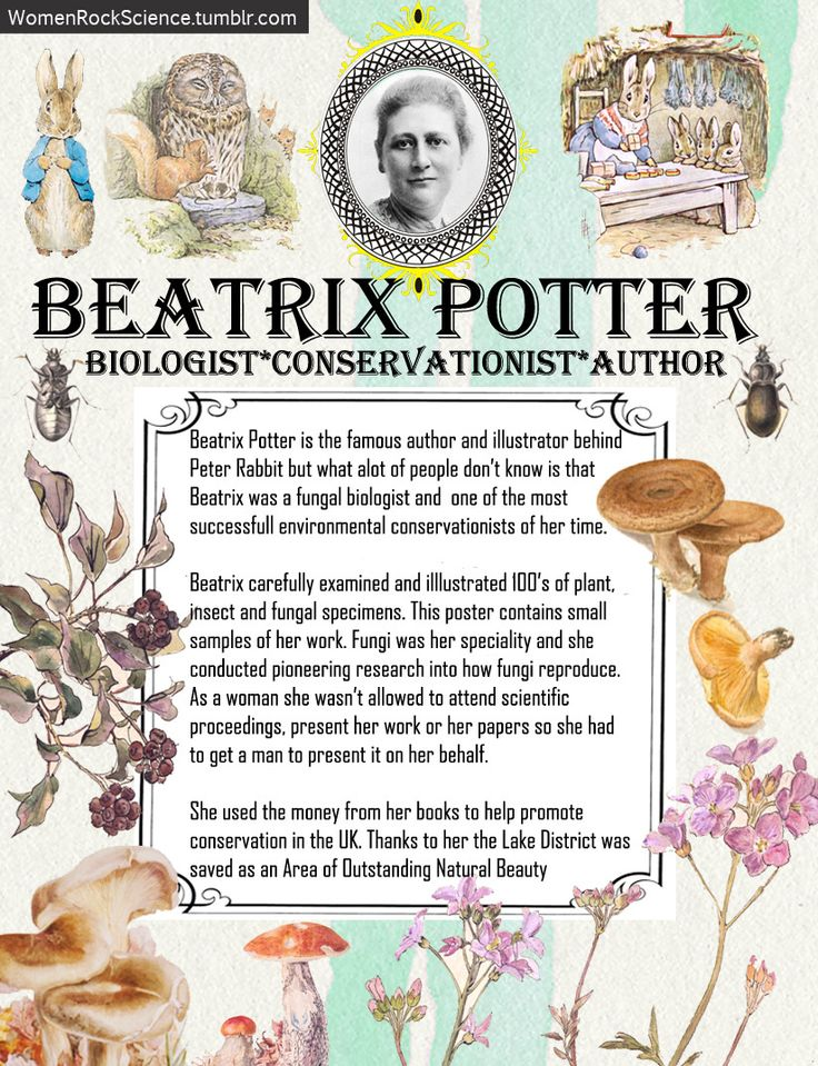 Beatrix Potter did way more than write children's books. Sources: V&A, Linnean, Scientist, AU Fungi