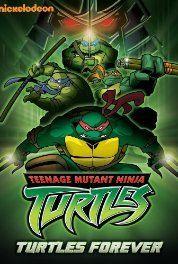 Turtles Forever (2009) Poster