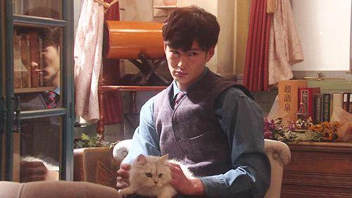 岡田将生 Okada Masaki ねこ cat   掟上今日子の備忘録