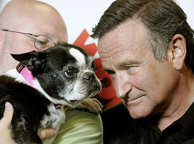 Robin Williams and a Boston Terrier