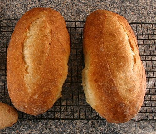 Two loaves of freshly baked, rustic Italian bread
