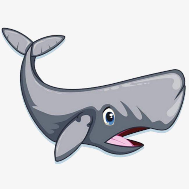 whalecartoon whalehand painted whalefish downloadhand painted shark