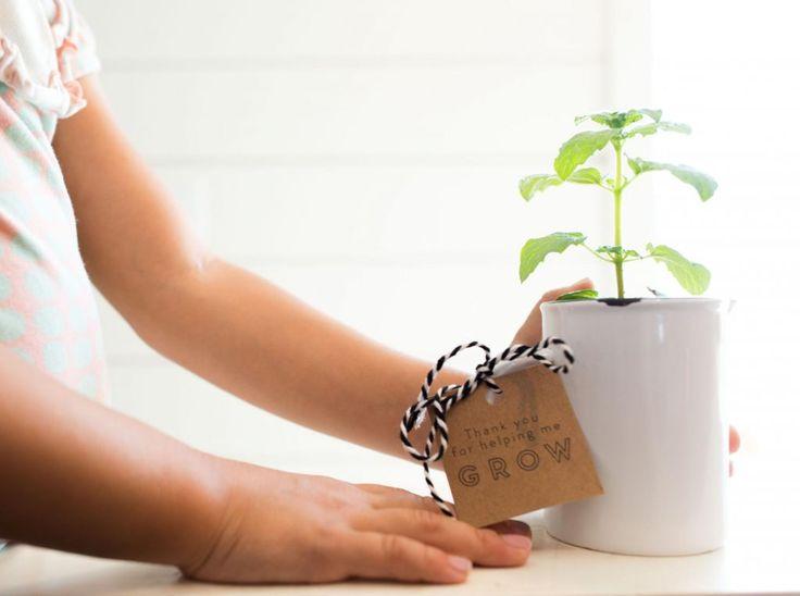 Practicing Thankfullness   Joanna Gaines   Teacher Gifts   Teacher Gift Ideas…