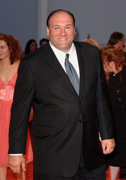Fallece a los 51 años el actor James Gandolfini, protagonista de la serie 'Los Soprano', durante sus vacaciones en Italia #gandolfini #actors #thesopranos #tvshow #celebrities #actores