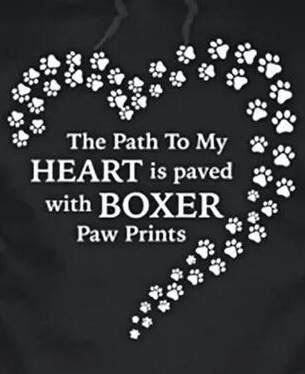 """Click visit site and Check out Hot """"dogs"""" T-Shirts & Hoodies. This website is top-notch.  Tip: You can search """"your last name"""" or """"your favorite shirts"""" at search bar on the top.  #dogs"""
