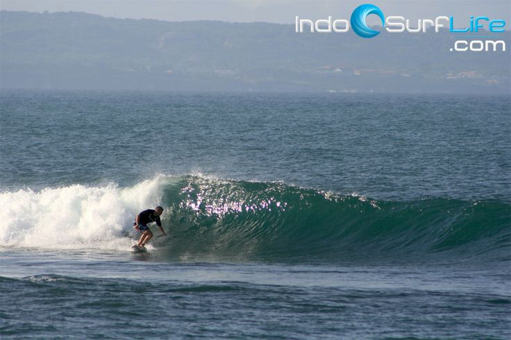 (28/01) Bali surf report already online. Check the reports + photos at http://indosurflife.com/