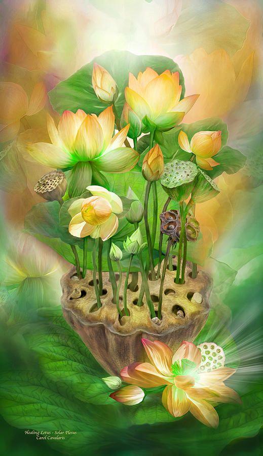 Healing Lotus - Solar Plexus Mixed Media  - Healing Lotus - Solar Plexus Fine Art Print