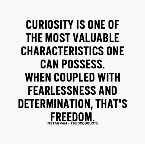 curiosity is one of the most valuable characteristics one can possess. we coupled with fearlessness and determination, that's freedom.