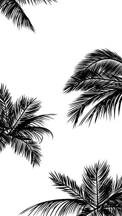 Best 25 White wallpaper iphone ideas on Pinterest White