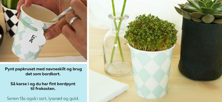 Lav fine bordkort på papkrus eller brug papkrus til karse! Se mere på:  http://www.blog.bog-ide.dk