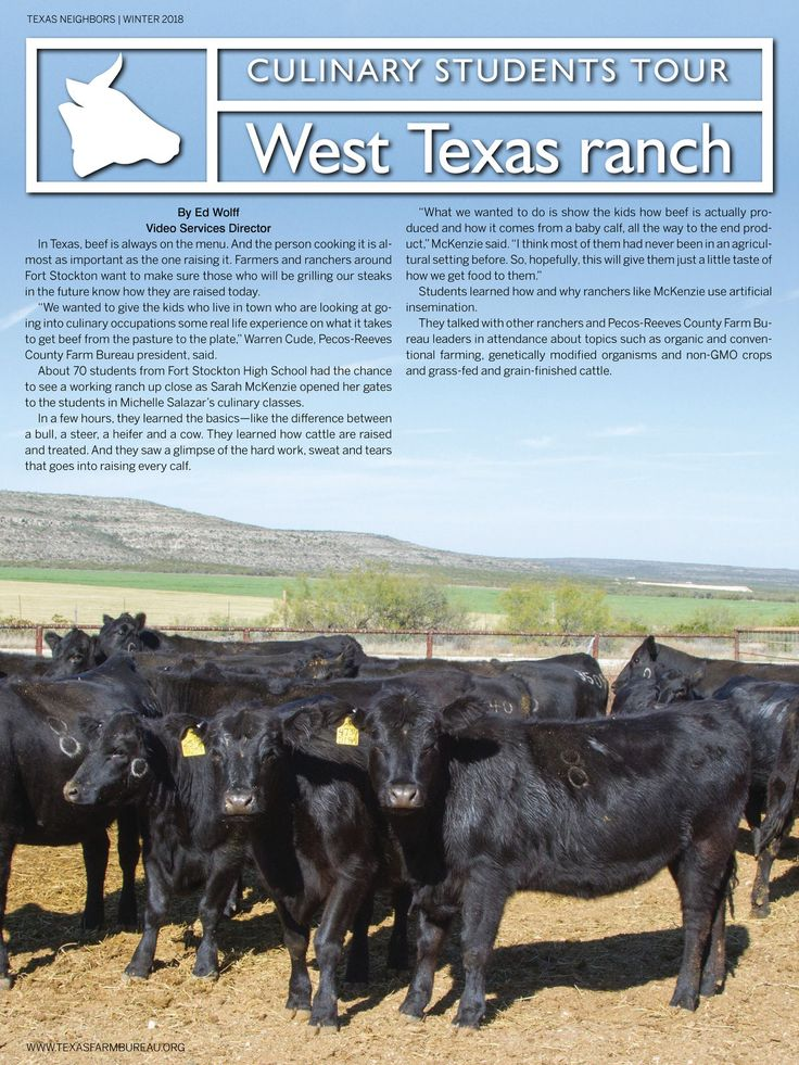 Texas Neighbors%20%20Winter 2018%20%20Culinary Students Tour West Texas Ranch