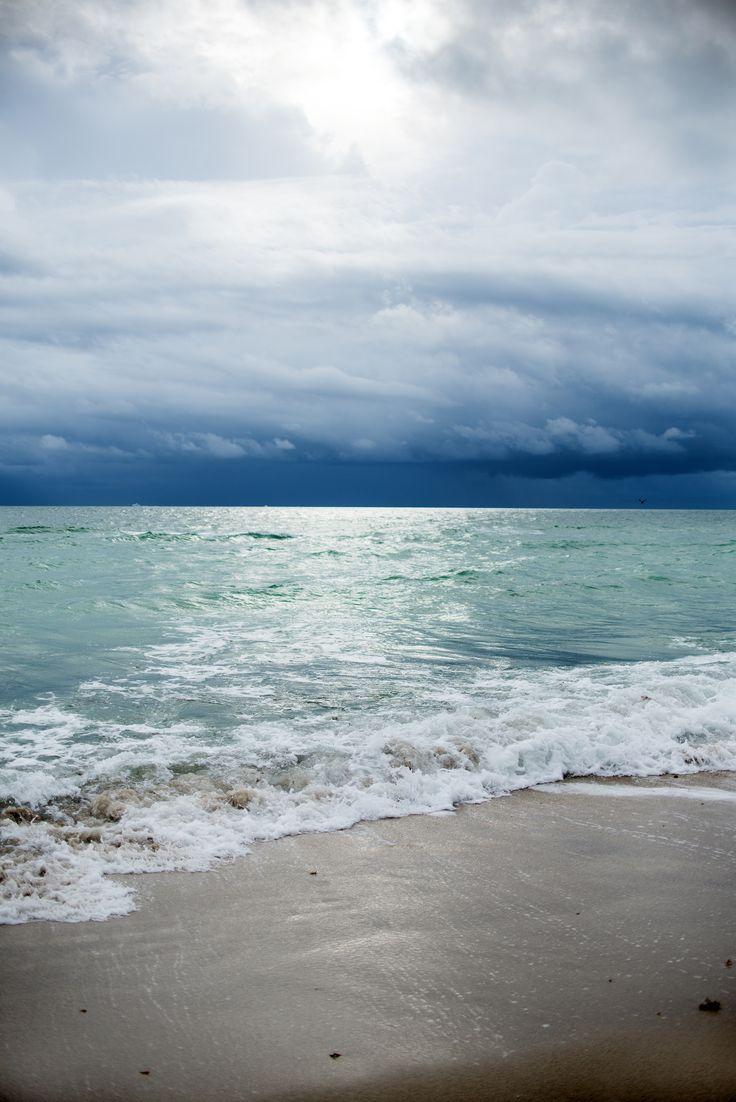 """Miami"" by Laura Zalenga"