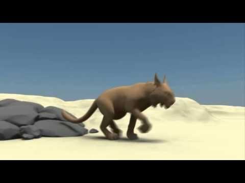 Animals & Creatures - Progress Reel