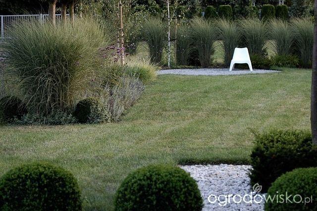 DUŻY OGRÓD małej ogrodniczki 1 - strona 714 - Forum ogrodnicze - Ogrodowisko