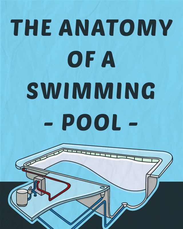 130 best pool maintenance images on pinterest bricolage bubble the anatomy of a swimming pool solutioingenieria Image collections