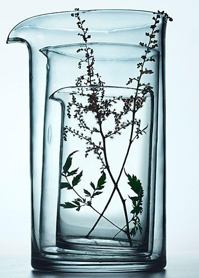 MEDICINAL PLANTS / Les Vertus des Plantes, Éditions du Chêne 2004 / photographer: Peter Lippmann #stilllife #plants