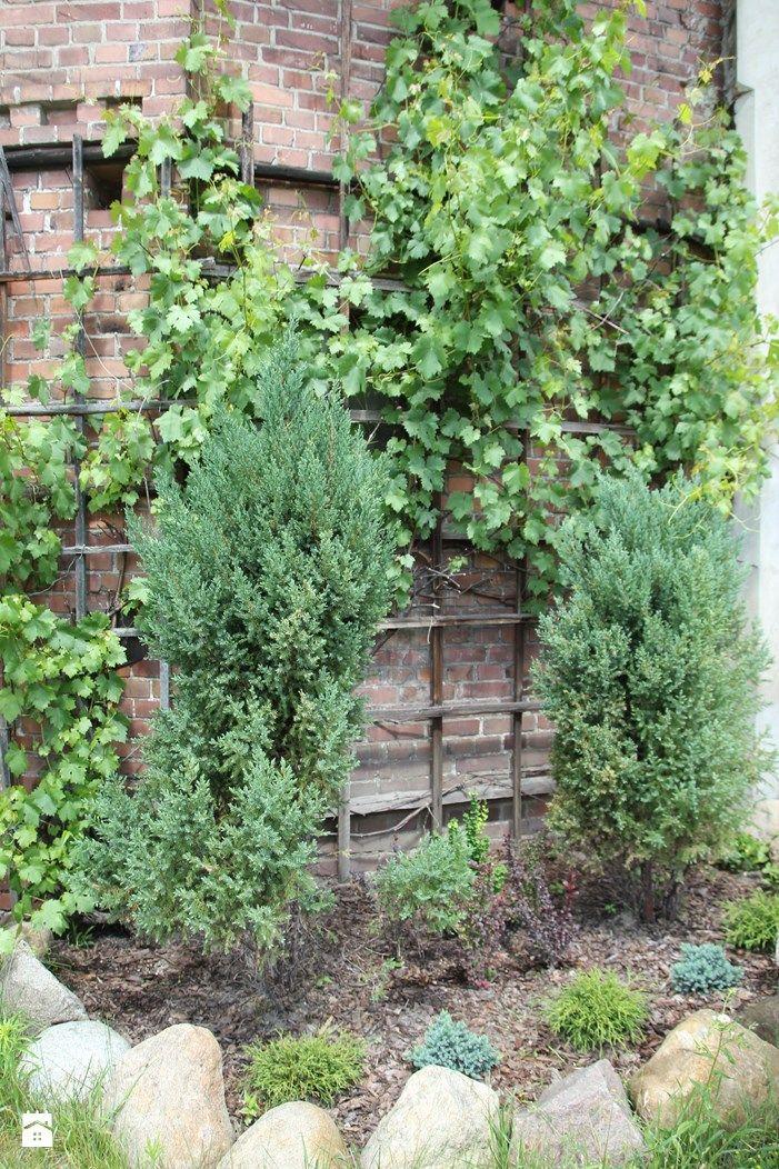 W ogrodzie. - zdjęcie od Agnieszka Kijowska - Ogród - Styl Tradycyjny - Agnieszka Kijowska garden, patio, garden diy, brick house, hammock, outdoor living