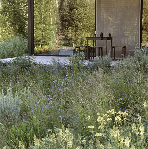 How To Make Your Landscape Blend In With the Surrounding Nature - an Award…